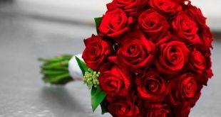 بوكية ورد احمر , صور مجموعه من الزهور الحمراء تعبر عن الحب و الرومانسيه
