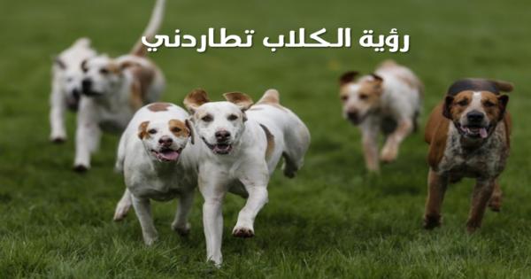 رؤية الكلاب تجري ورائي في المنام تفسير حلم الهروب من كلب يلاحق شخص افخم فخمه