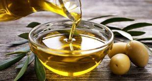 فوائد زيت الزيتون للجسم , اعتني بصحتك ونعومه بشرتك باستخدام زيت الزيتون