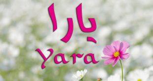 ما معنى اسم يارا , يارا جمال اسمك له معاني واضحه جذابه