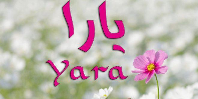 صور ما معنى اسم يارا , يارا جمال اسمك له معاني واضحه جذابه