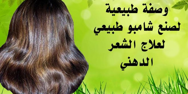 صورة شامبو طبيعي للشعر الدهني , علاج دهون الشعر بشامبو خالي من الكيماويات