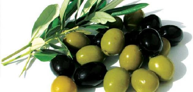 صورة فوائد اكل الزيتون , معلومات اساسيه عن اهميه الزيتون بكل انواعه