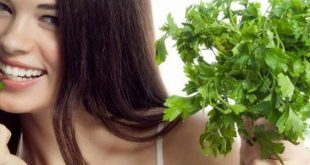 فوائد البقدونس للشعر , علاج تساقط الشعر بالبقدونس