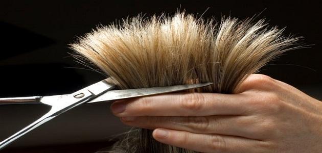 صورة ماهو تفسير قص الشعر في المنام , قص الشعر طول للعمر 3186