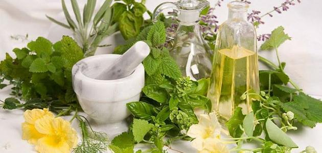 صورة علاج تاخر الحمل بالاعشاب , الاعشاب السحرية وعلاقتها بالحمل السريع 3555 1