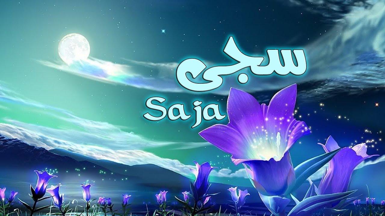 صورة معنى اسم سجا , اسم سجا في القاموس