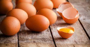تفسير حلم جمع البيض للحامل , حلمت اني بجمع بيض