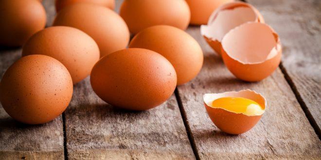 صور تفسير حلم جمع البيض للحامل , حلمت اني بجمع بيض