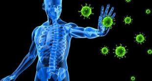 صور ماهو جهاز المناعة , اهميه جهاز المناعه في جسم الانسان