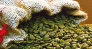 حبوب القهوة الخضراء , اهميه استخدام منتجات حبوب القهوة الخضراء