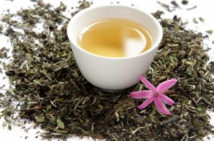 صور ماهو الشاي الابيض , اهميه وفوائد استخدام الشاي الابيض