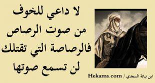 صورة من لم يمت بالسيف مات بغيره القصيده كامله , اشهر قصايد بن نباته السعدي 2042 4 310x165
