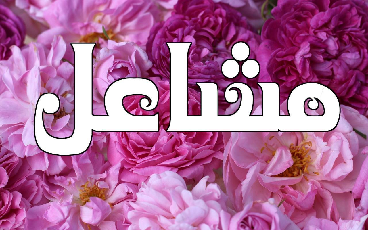اسم مشاعل معنى اسم مشاعل 7