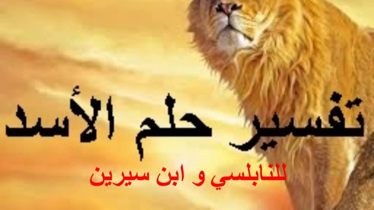 صورة رؤية الاسد يطاردني في المنام , ما تفسير وجود اسد فى منامى