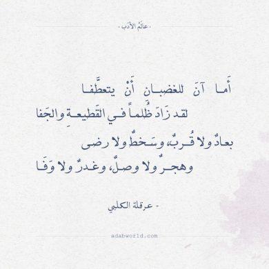 شعر اعتذار للحبيب عايزة اتاسف لحبيبي ماذا اقول له افخم فخمه