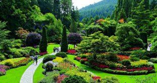 موضوع تعبير عن الحديقة , مكان يرتاح فيه البال و الذهن