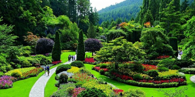 صورة موضوع تعبير عن الحديقة , مكان يرتاح فيه البال و الذهن