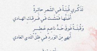 صورة قصائد احمد شوقي , كلمات امير الشعراء مكتوبه