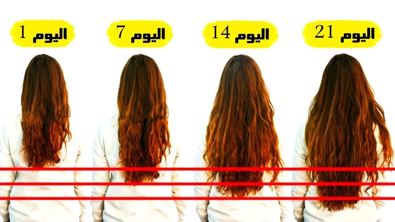 صورة اشياء لتكثيف الشعر , اسهل طريقه لتكثيف الشعر بكل سهوله