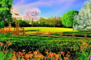صورة موضوع تعبير عن فصل الربيع بالعناصر , التعبير عن الربيع له قواعد اكتشفها معى