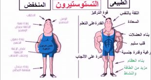 صورة ارتفاع هرمون الذكورة عند الرجال , مخاطر ارتفاع هرمون التستوستيرون