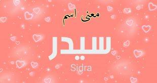 معنى اسم سيدرا , سيدرا من الاسماء التى تحمل اكثر من معنى
