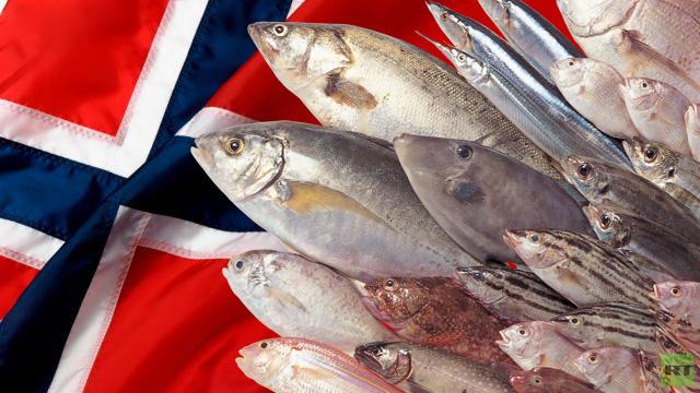 صورة نزع شوك السمك في المنام , تفسير العلماء ازاله الشوك في الحلم