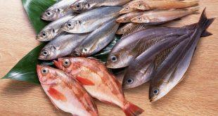 نزع شوك السمك في المنام , تفسير العلماء ازاله الشوك في الحلم