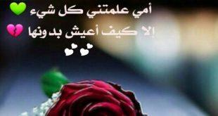 صورة كلمات لامي الحبيبة , كلمات تسعد امى وتفرحها