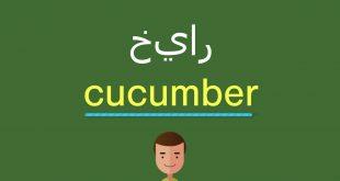 صورة معنى كلمة خيار بالانجليزي , اسهل وسيله لتعلم معني كلمه Cucumber