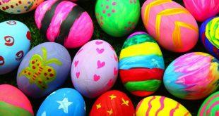 صورة كلمة بيض بالانجليزي , فكره مطرقعه عشان ابنك ماينساش كلمه egg