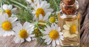 صورة علاج ارتفاع نسبة الكرياتينين بالاعشاب , دور النباتات الطبيعه وخفض الكرياتينين