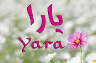 صورة اسم بنات بحرف الياء , مجموعه نادرة وجديدة لاسماء الصبايا
