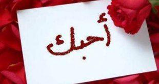 صورة ما معنى كلمة احبك , الحب كلمه صغيره ولكنها ذات معنى واسع