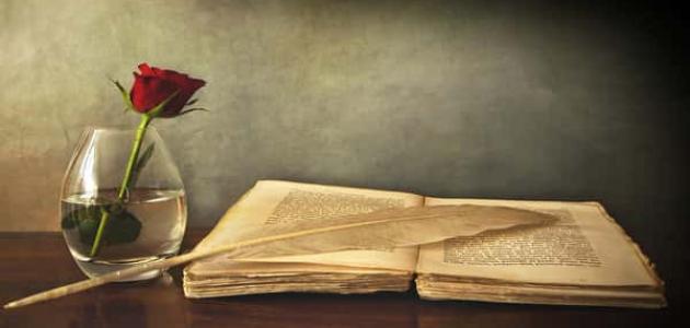 صورة قصائد شعرية عن الوطن , قصائد فى حب الوطن مهداه لوطنى الغالى